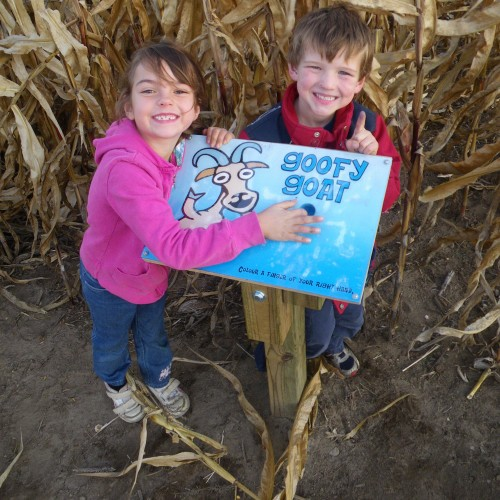Finger Find Game in the 6 acre corn maze