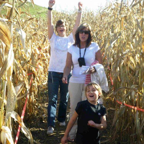 corn maze in Pembroke