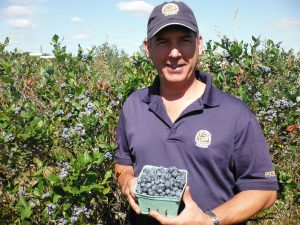 Fresh blueberries picked at Hugli's Blueberry Ranch in Pembroke, Ontario.